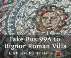 Take a Compass bus to Bignore Roman Villa