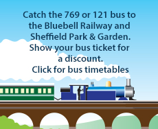 Bluebell railway web-advert