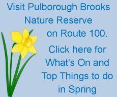 Pulborough Brooks Nature Reserve