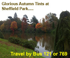 Sheffield Park by Bus with Compass Travel